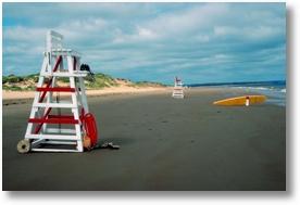 Beach Job
